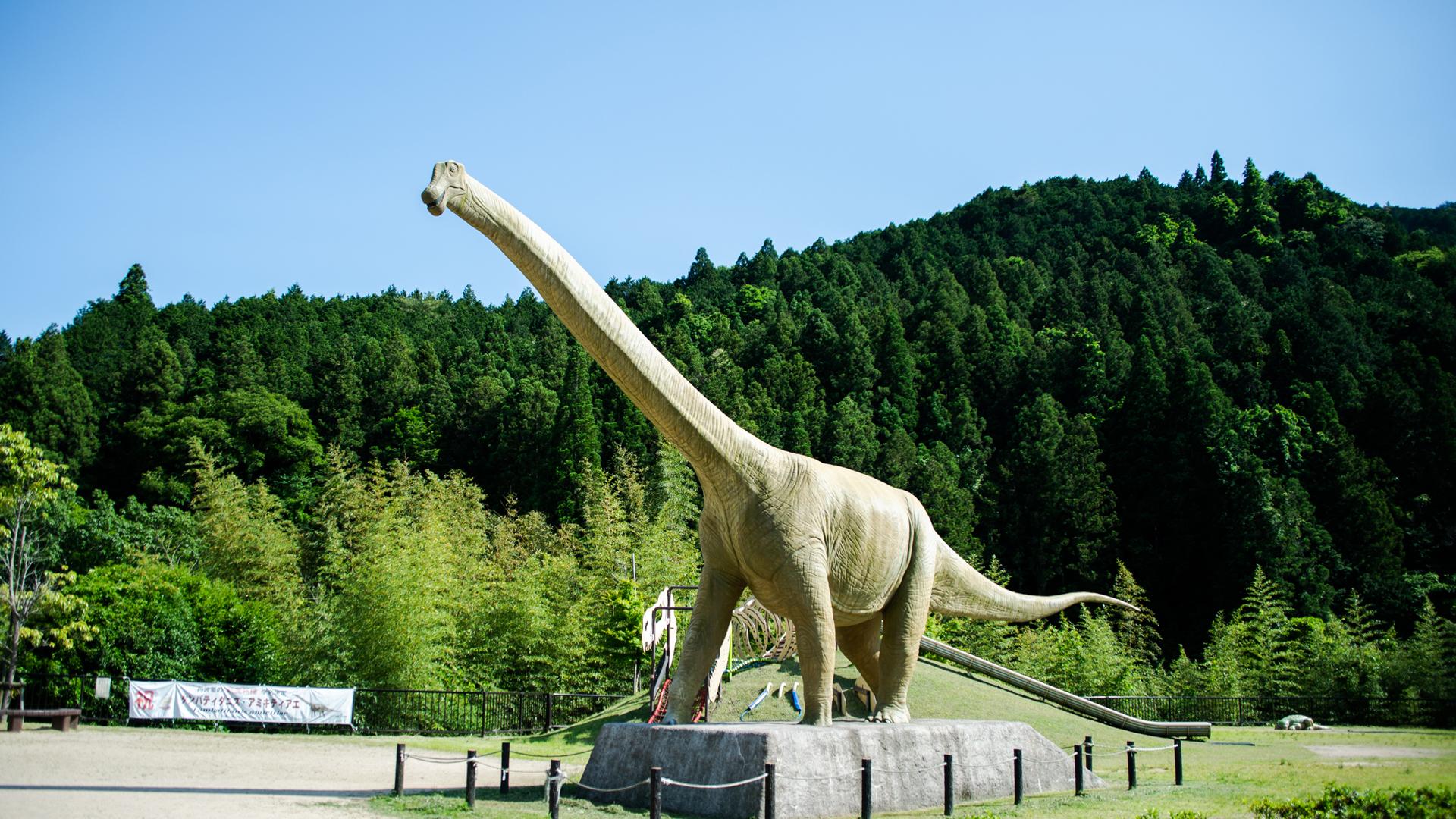日本最大級の恐竜に会える、丹波竜の里へ